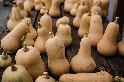 vegetable brown gourd lot produce