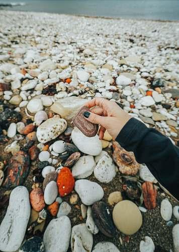 egg brown stone pebble