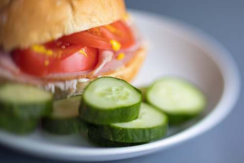 plant burger with slice of green cucumber burger