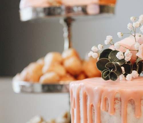 dessert cake cake