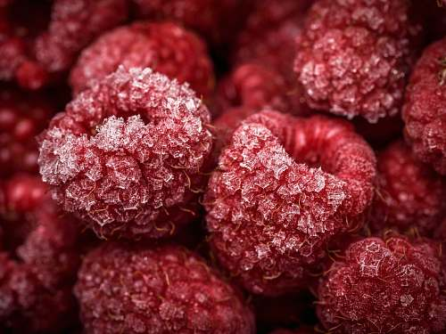 fruit close-up photo of red fruits raspberry