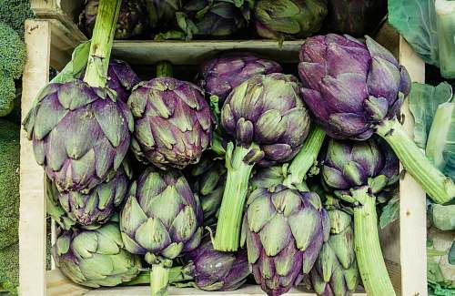 produce close-up photography of green and purple vegetables artichoke