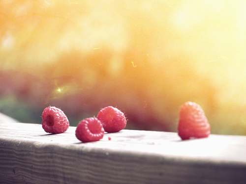 fruit closeup photo of red fruits raspberries