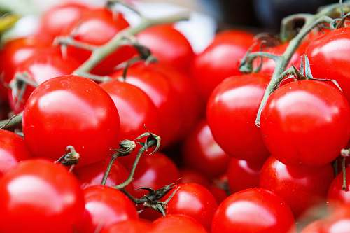 red closeup photo of red tomatoes tomatoes