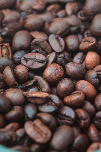 bean closeup photography of coffee beans flora
