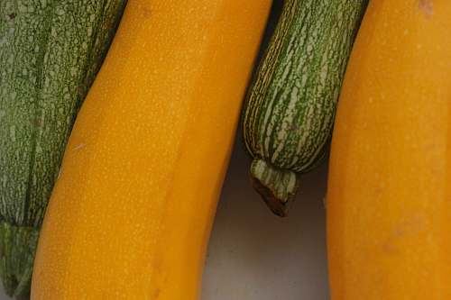 plant closeup photography of yellow and green vegetables produce