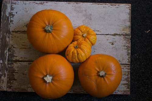 orange five pumpkins on white slab citrus fruit