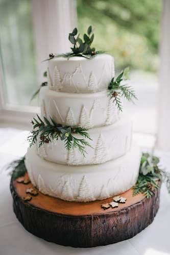 cake focus photo of white icing-covered 4-tier cake dessert