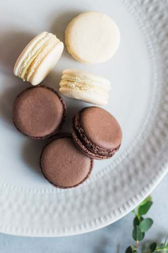 egg french macaron on plate sweets