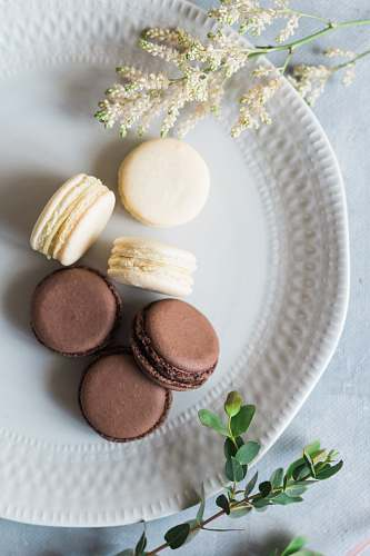 confectionery french macarons on plate sweets