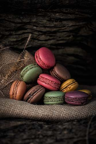 egg French macaroons on gray textile reptile