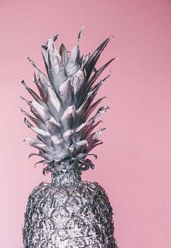 fruit gray pineapple ornament pineapple