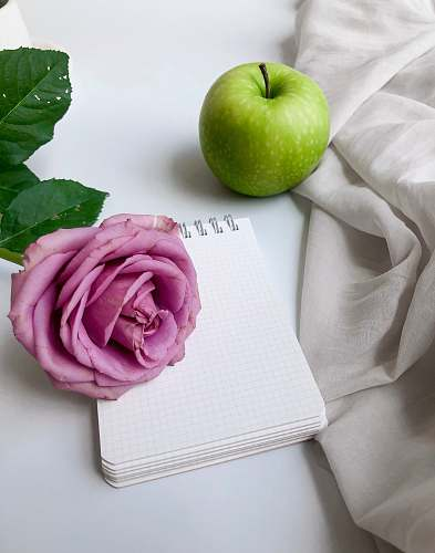 plant green apple near a pink petaled rose flower and white mini-notebook apple