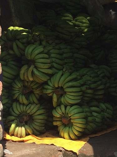 fruit green bananas banana