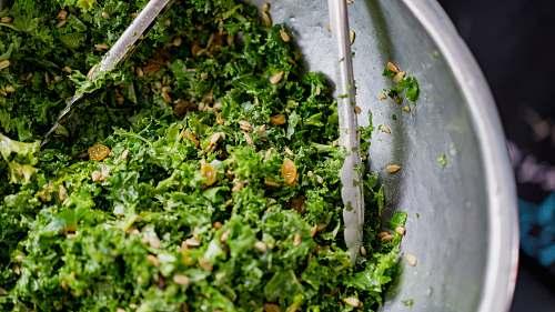 kale green vegetables on gray basin vegetable