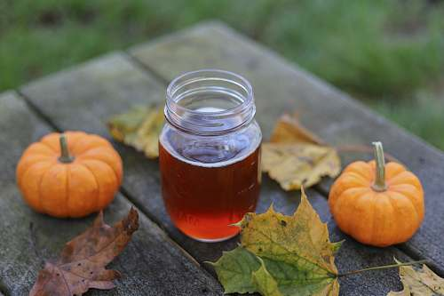 plant jar of honey beside two pumpkins pumpkin