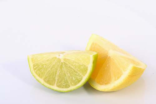 plant lime and lemon slices fruit