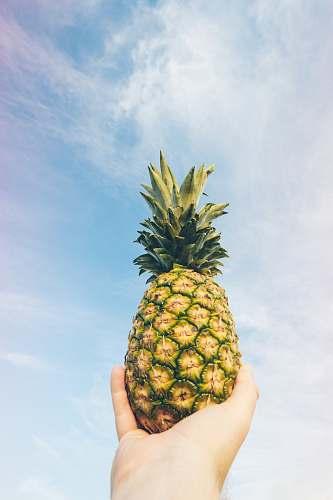 fruit low angle photo of pineapple pineapple