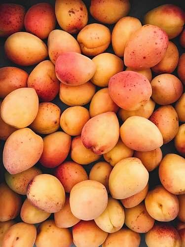 fruit mango lot produce