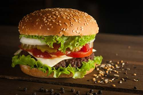 burger meat and cheese burger surrounded by sesame seeds animal