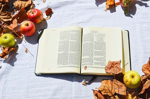 book opened white book beside apples apple