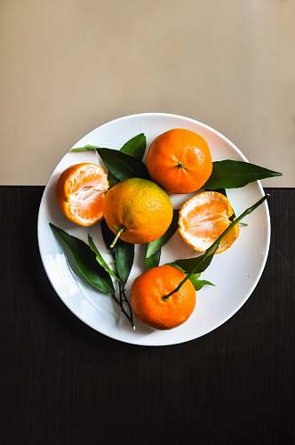 plant orange fruit on plate citrus fruit