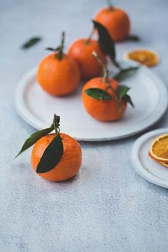 fruit orange fruits on white plate orange