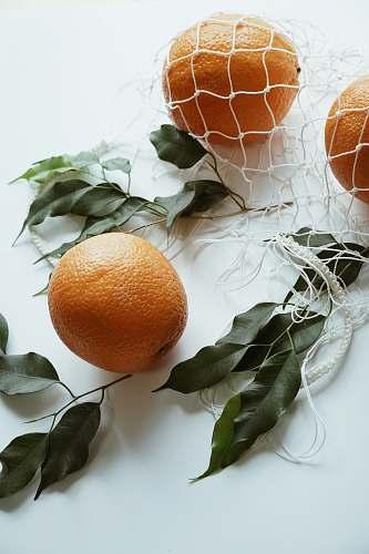 plant orange fruits on white surface fruit