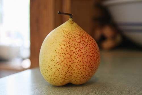 fruit pear fruit on gray panel pear