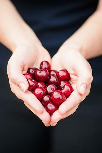 heart person holding red cherries person