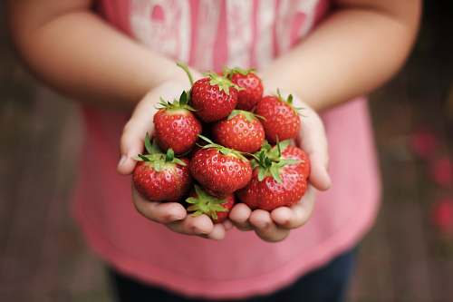 fruit person holds ripe strawberries plant