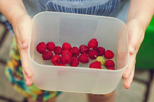raspberry person showing cherries on clear plastic box fruit