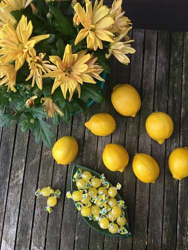 fruit photo of lemons and yellow flowers citrus fruit