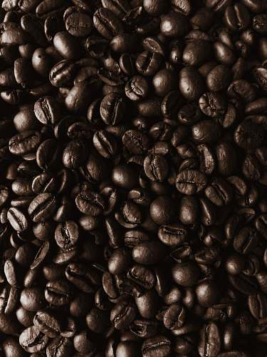 produce pile of coffee beans bean