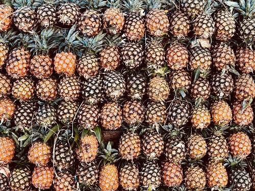 pineapple pile of pineapple fruits fruit