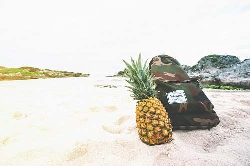 fruit pineapple beside backpack pineapple