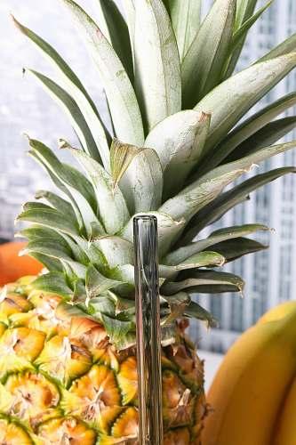 fruit pineapple beside bananas plant
