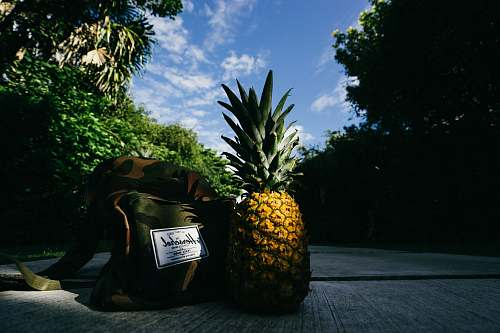 fruit pineapple fruit beside Herschel crossbody bag on gray concrete road pineapple