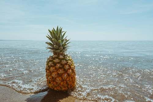 fruit pineapple fruit on seashore pineapple