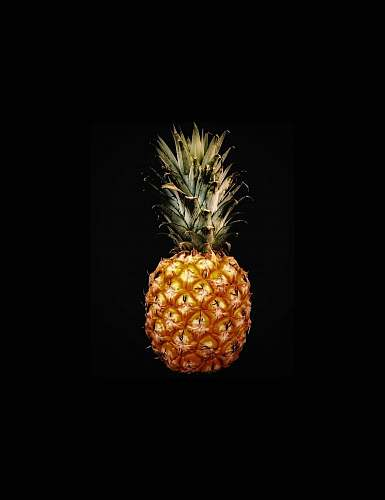 pineapple pineapple fruit screenshot plant