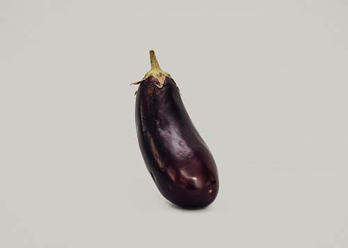 eggplant purple eggplant against white background vegetable