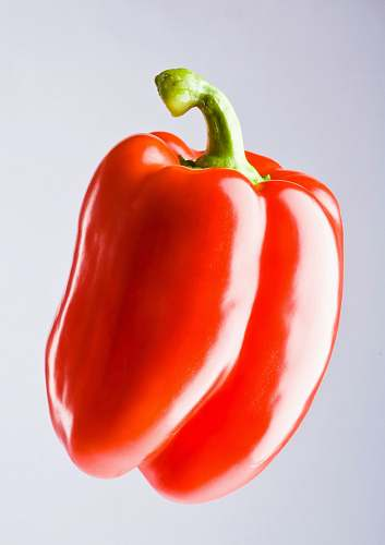 pepper red bell pepper vegetable