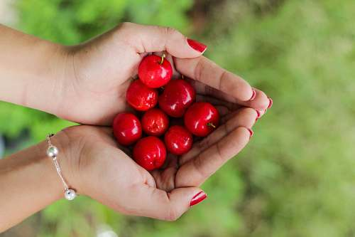 fruit red berries on person's hands cherry