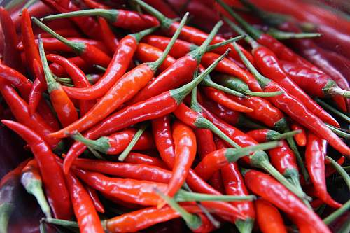 pepper red chili peppers vegetable