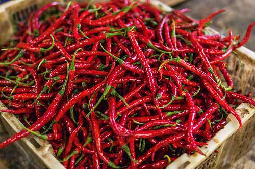 vegetable red chilies pepper