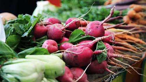 vegetable red raddish on table radish