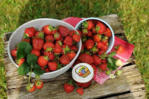 fruit red strawberries in bowl plant