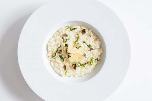 meal risotto on white ceramic plate white
