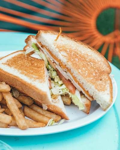 burger sandwich and friers dish sandwich