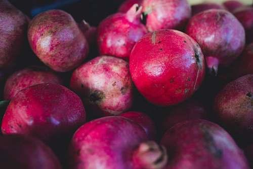 fruit selective focus photo of pomegranate fruits apple